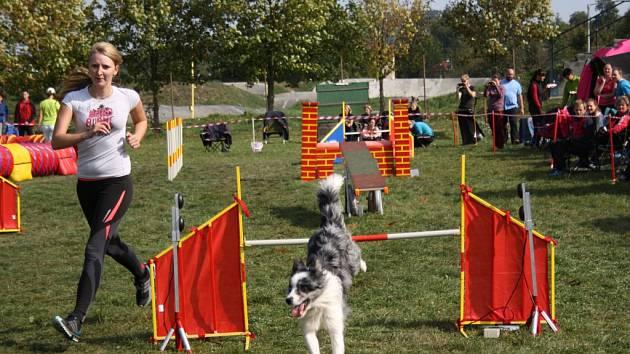 Stará střelnice v Hranicích byla v sobotu 3. října svědkem druhého ročníku agility závodů, kterých se dohromady účastnilo 95 psů se svými páníčky.