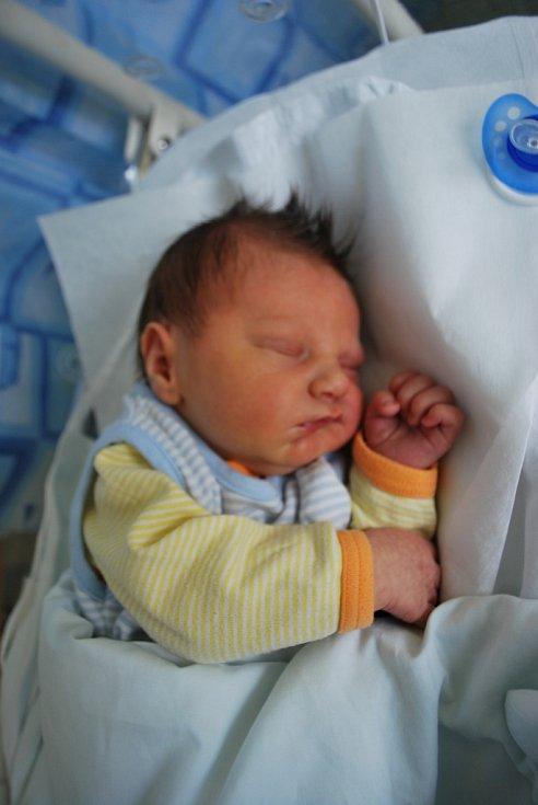 Vilémek Rakovský, Soběchleby, narozen dne 17. září 2012 v Přerově, míra: 52 cm, váha: 4 020 g