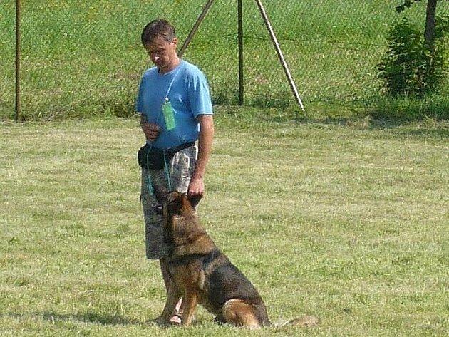 Desítky psů během soboty v Hranicích soutěžily o pohár starosty města.