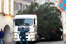 Cesta vánočního stromu na náměstí v Hranicích