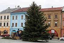 V Hranicích na náměstí už stojí vánoční strom