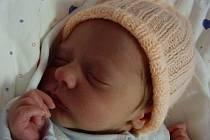 Aleš Mikeš, Přerov, narozen 18. 12. 2008 v Přerově, míra 47 cm, váha 2 750 g