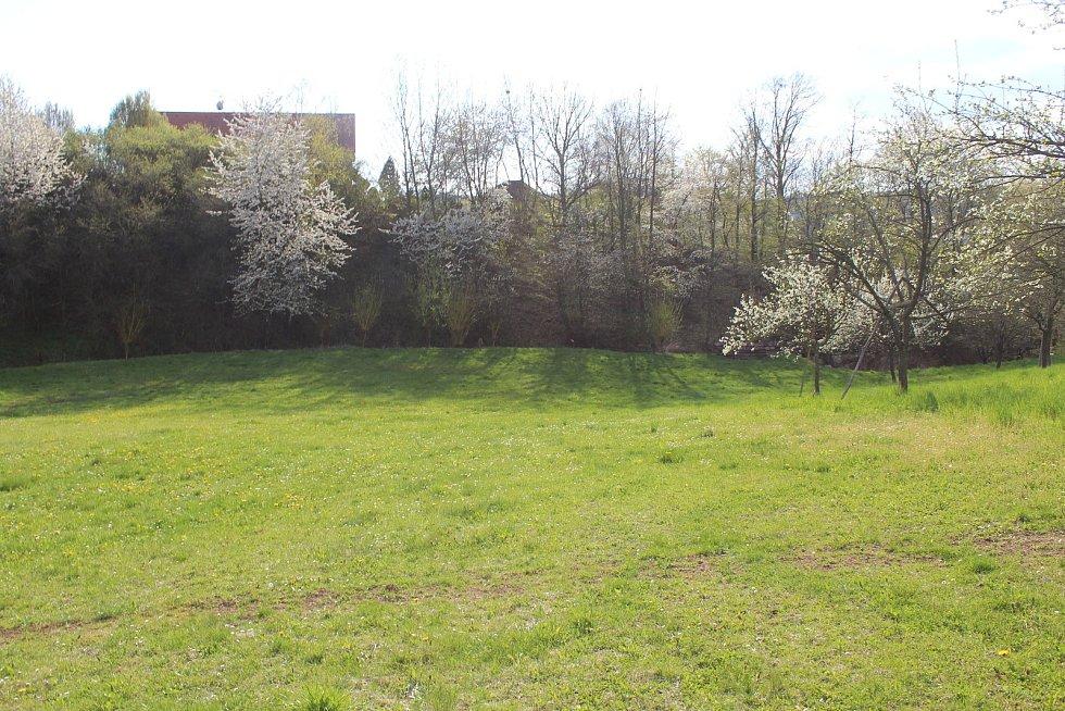 Tajemné kruhy v trávě  na louce v Ořechově, kdysi tam stávala cihelna.