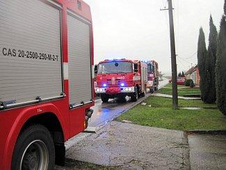 Krávu propadlou do sklepa museli vyprošťovat hasiči