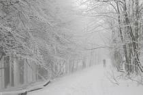Okolo nejvyššího bělokarpatského vrcholu Velké Javořiny (970 m n. m.) se dá znovu běžkovat. Ve středu 14.4 a vsobotu 17. 4. vyrazil do stopy také Silvestr Malušek zUherského Hradiště.