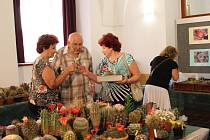 Výstava kaktusů v rámci festivalu Týká se to také tebe.