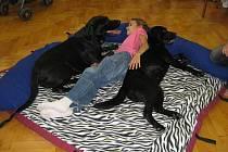 Terapie se psy se již brzy stane novou léčebnou metodou v Uherském Brodě.