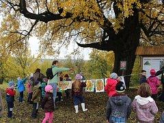 Děti oslavily Den stromů výsadbou oskeruší a jasanů