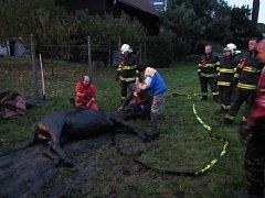 Silně podmáčený terén kolem tůňky ve Zlámanci se v pátek 6. října nad ránem stal léčkou pro koně, který se do ní zabořil zadní částí těla.