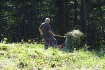 Správa Chráněné krajinné oblasti Bílé Karpaty navrhla vyhlásit místní přírodní památku Kalábová II zvláště chráněným územím.