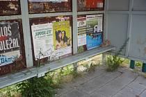Autobusové zastávky nevypadají zrovna vábně, přesto jsou často dějištěm různých večírků.