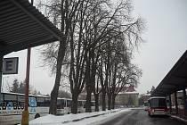 První stromy, v rámci rozsáhlé likvidace nebezpečné zeleně v Uherském Hradišti, padly za oběť motorovým pilám, v parku u obchodní akademie. Nyní jsou na řadě jírovce u autobusového nádraží