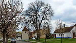 Kudlovice, vesnice v Chřibech