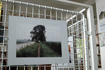 Výstava amatérských fotografií s tématikou Baťův kanál v babické knihovně.