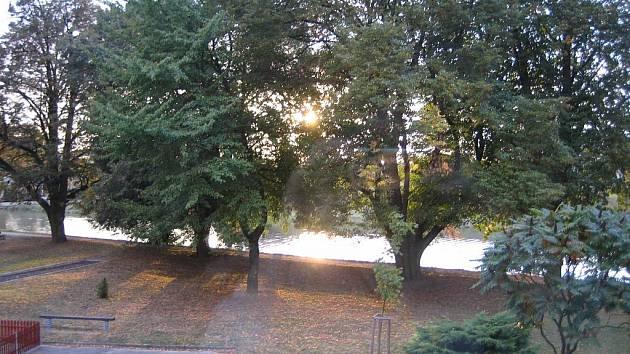 Stromořadí u Moravy. Ilustrační foto.