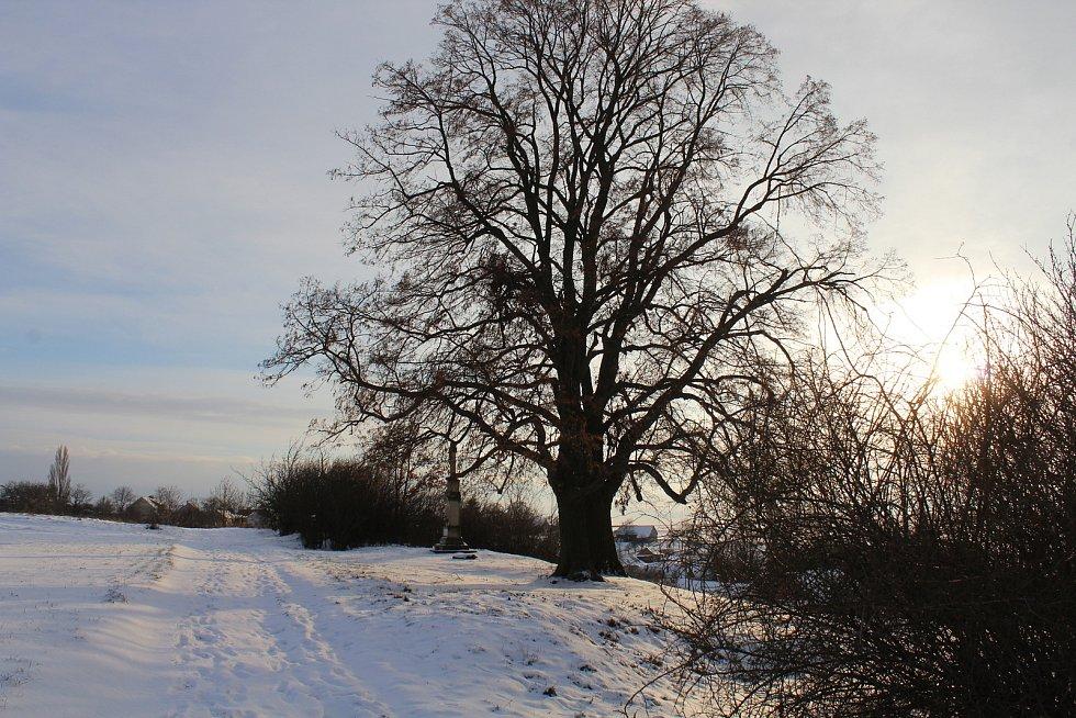 Hostějov se sněhovou pokrývkou.