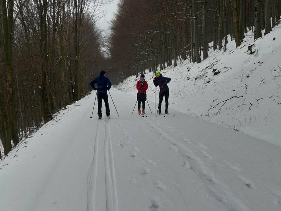 Celá trasa z Kamenné búdy na Javořinu měří kolem jedenácti kilometrů.