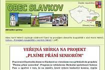 Dočasné webové stránky obce Slavkova. Ilustrační foto.