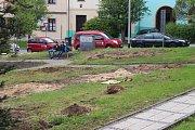 Stromy zmizely z prostranství před základní školou na Mariánském náměstí.