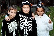 Víc než tisíc lidí prožívalo v pátek večer halloweenskou atmosféru ve staroměstském kovovém zooparku.