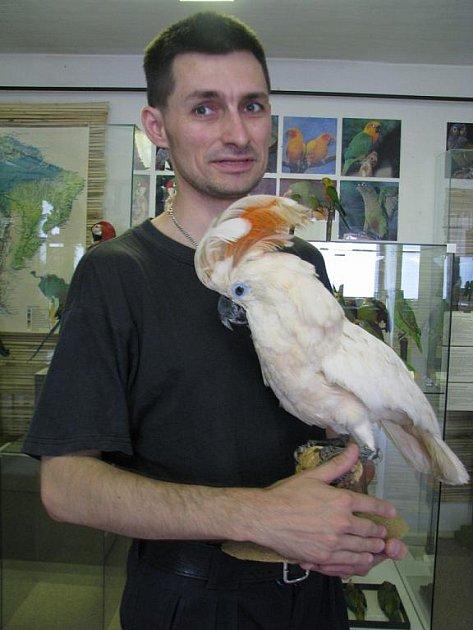 V Muzeu J. A. Komenského je k vidění zajímavá výstava papoušků.