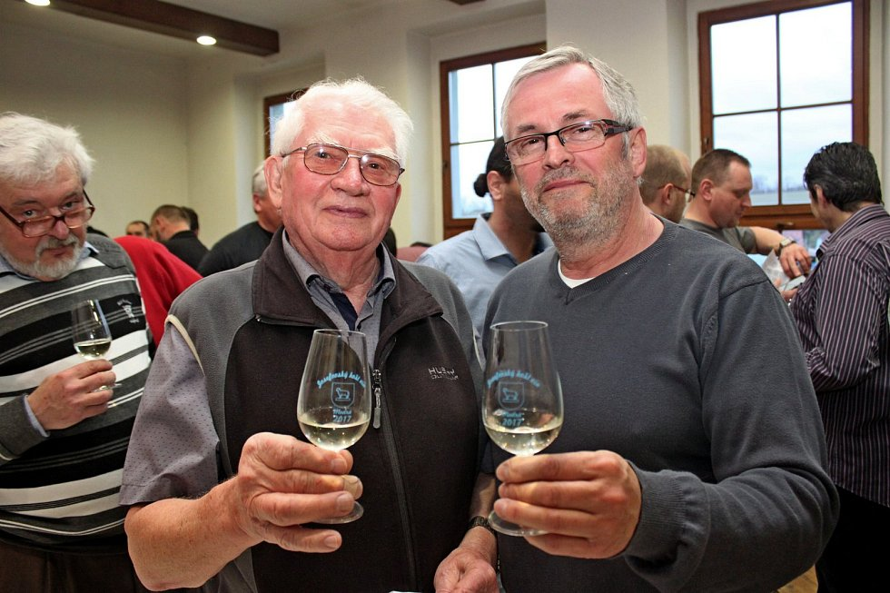 Vyznavači vinného moku si přišli na Modré na své. Ochutnat mohli 181 vzorků vín.