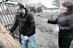 Slovácké Velikonoce na televizní obrazovce. Manželé Pavlicovi - představují výrobu došků.