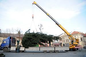 V Uherském Hradišti v pondělí 1. prosince postavili vánoční strom.