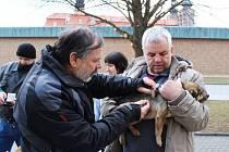 Očkování psů na Velehradě