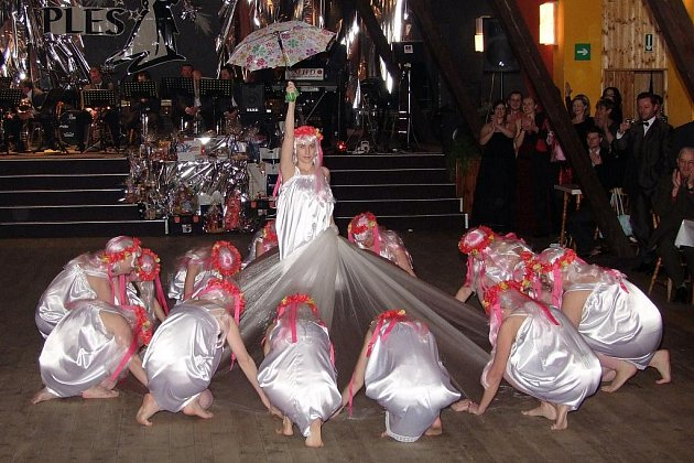 Předtančovala taneční skupina KoKrHolky.