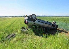 Řidiče překvapila na silnici divoká zvěř.