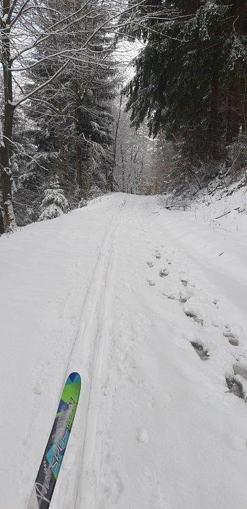 Z Mikulčina vrchu se také můžete vydat po další pěkné běžkařské trase až k chatě Vyškovec.