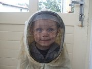 VČELAŘ. S včelkami jsem dávno kamarád.