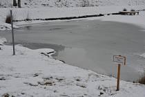 Vrstva ledu na zamrzlých rybnících v regionu představuje pro život ve vodě náročné období.