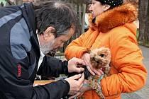 Psy v Modré očkoval proti vzteklině veterinář Jiří Chrastina