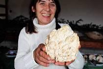 Za unikátní houbařský úlovek ratíškovických houbařů považovala salašská mykoložka Alena Filípková korálovce jedlového.