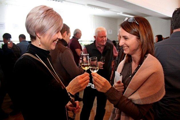 Na Valentýnské výstavě vín vKudlovicích, letos první na Slovácku, mohli lidé okoštovat 287 vzorků vín.
