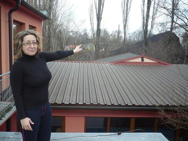 Římsy domu i dvůr rodiny Černuškovy pokrývá černý prach z nedaleké výtopny. Rodina chce tento stav řešit prostřednictvím úřadů i soudů.