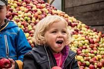 V Hostětíně budou ochutnávat jablečné produkty.