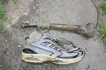 Kriminalistický technik ohledal místo nálezu a nalezenou botu s kostí odvezl na soudní lékařství. Tam se potvrdilo, že jde o lidské ostatky.