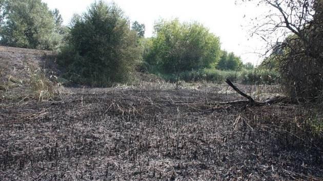 Hořelo dvanáct kilometrů travního porostu. Zasahovalo 19 jednotek