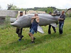 Na Živé vodě budou k vidění živé vyzy velké i jejich pětimetrová napodobenina. Ta byla v pátek slavnostně odhalena Jiřím Kročou a vodníkem.