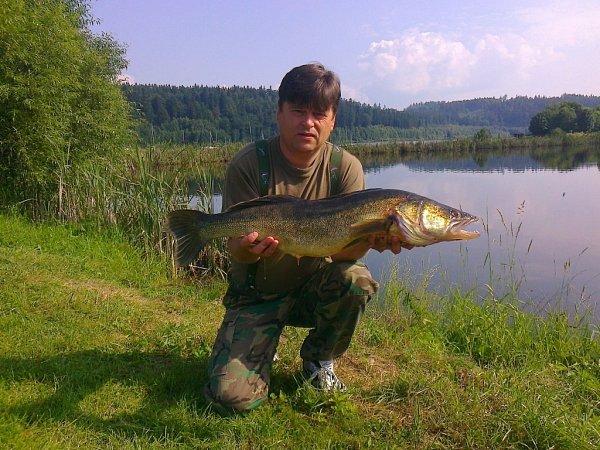 Soutěžní číšlo 13 - Květoslav Zabák, candát, 86cm, nevážen.