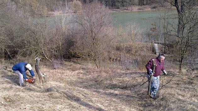 Bobři začínají svou činností ohrožovat i ekologicky významnou lokalitu Chrástka. Na snímku členové ochranářského sdružení Orchis při údržbě plochy.