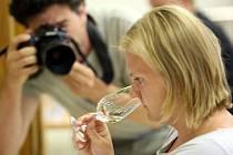Hodnocení vín Top víno Slovácka 2016 v Uherském Hradišti.