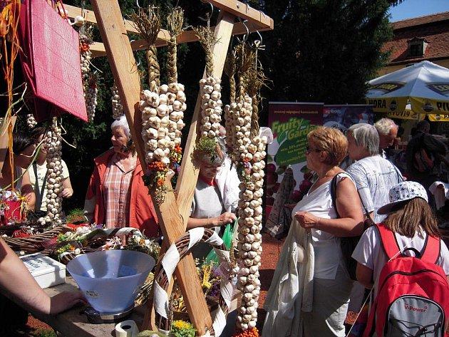 Slavnosti česneku v Buchlovicích.