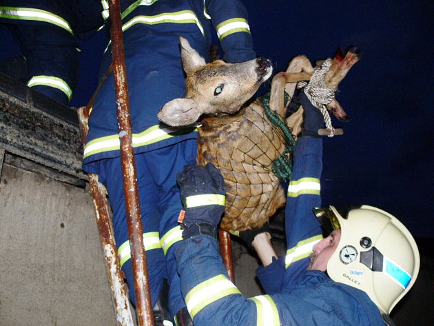 Zásah hasičů byl úspěšný.