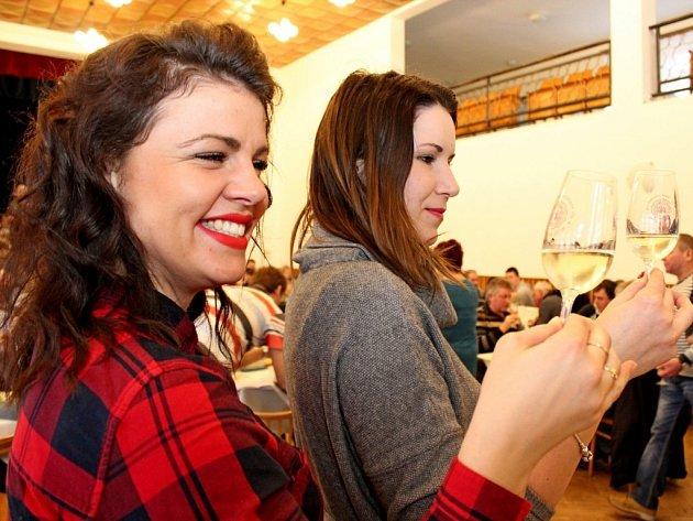 Na Valentýnské výstavě vín v Kudlovicích mohli lidé okoštovat 341 vzorků vín.