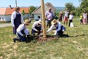 Dny slovanské kultury v Rochus parku. Účinkující folkloristé přijeli z Polska i Chorvatska. Došlo i na mezinárodní kácení májky.