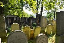 Židovský hřbitov v Uherském Brodě.